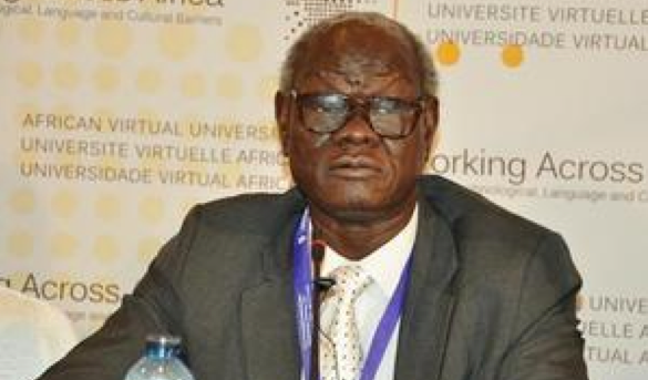 Professor Peter Adwok Nyaba, the former Minister of Higher Education and Scientific Reseach, and the SPLM's Chairman of Operation(photo: AVU)