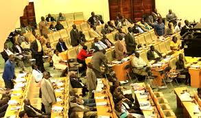 South Sudan parliament after some members of parliament fled the country or took refuge in the UNMISS camps in the country. With more than five MPs standing, many other MPs are busy reading anything within their reach(Photo: Nyamilepedia file)