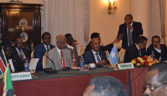 An extraordinary session of the IGAD heads of states meeting in the Ethiopian capital, Addis Ababa, on 10 June 2014 (IGAD photo)