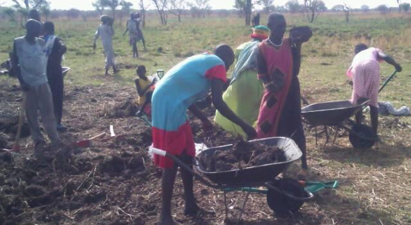 People digging a piece of land in Ayod county(Photo: via Gawaar Youth Forum)