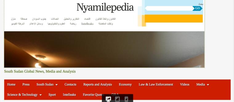 Nyamilepedia-011