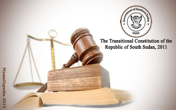 South Sudan, Constitution cover image.