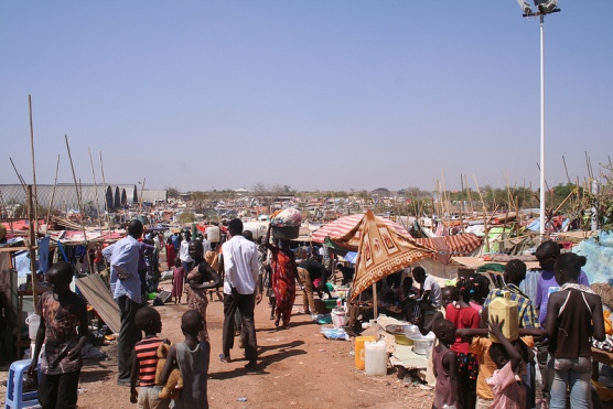 The internally displaced persons establishing camps under the protection of the United Nation(Photo: file)