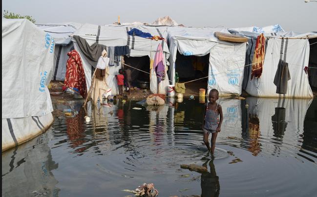 IDPs Tongping
