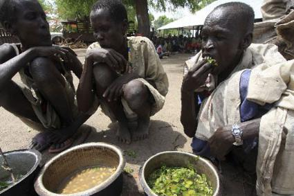 Eating leaves of trees, water Lillies, reptiles, roots while starving more than 50, 000 children may die from hunger, million displaced and more than half of the country's population live in poverty as Salva Kiir government invest billions of US dollars in military to fight the war(Photo: Africa Review)