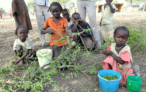 Children sort through leaves to eat, Jamam camp, South Sudan...
